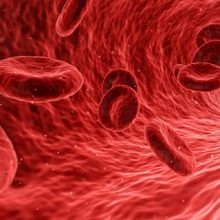 Las artroscopias de rodilla roban nuestras células madre